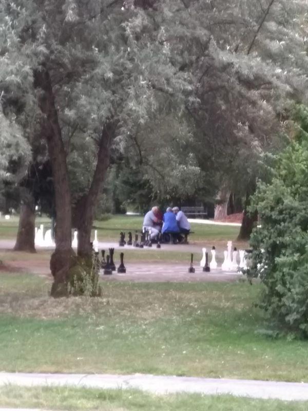 Die 4 Schachspieler im Europapark