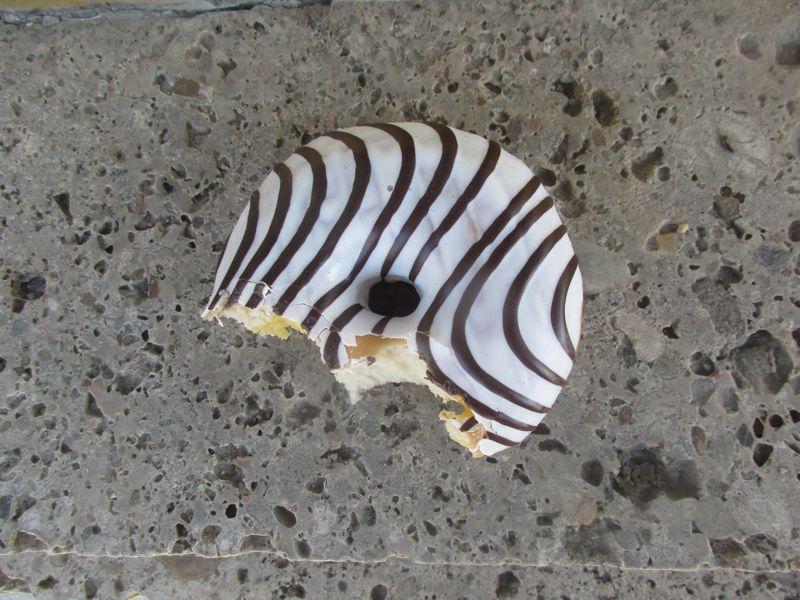 Angebissener Zebra-Donut