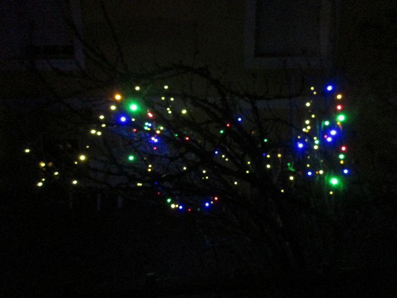 Die bunte Weihnachtsbeleuchtung im Baum Weihnachtsbeleuchtung im Baum