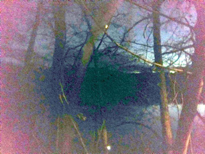 Der Kleine See in der Nacht des 20. November 2020, bearbeitet